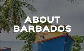 Stoutes Car Rental Barbados Airport Barbados